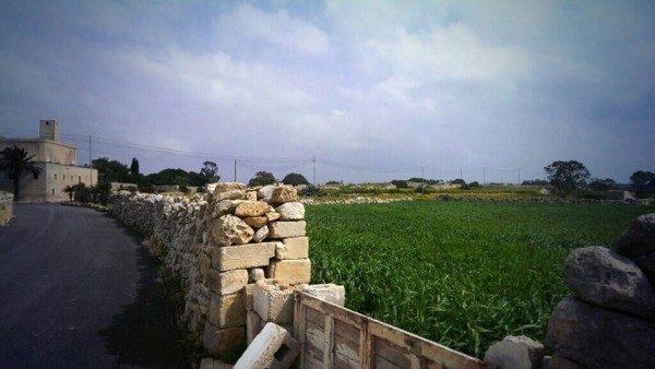 Malta in solitaria
