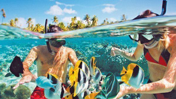 756316-rangiroa-snorkelling