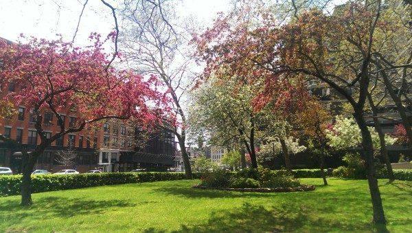 Giardini New York