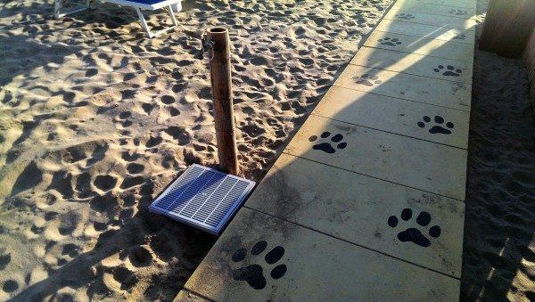 spiaggia 82