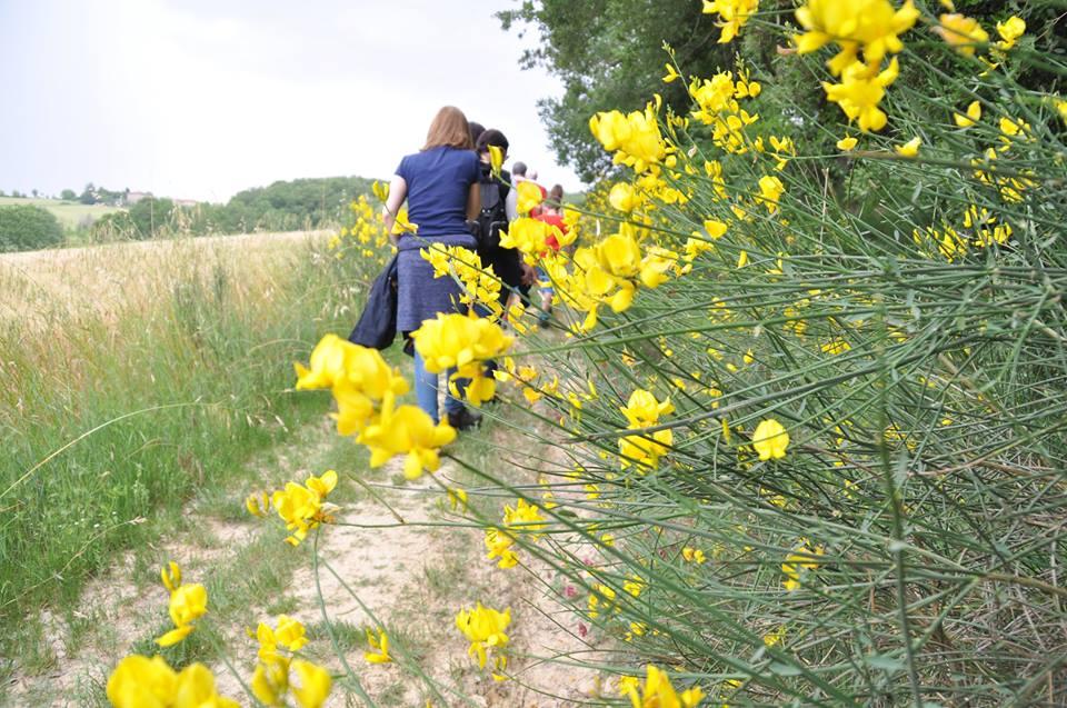 eurobis-passeggiata