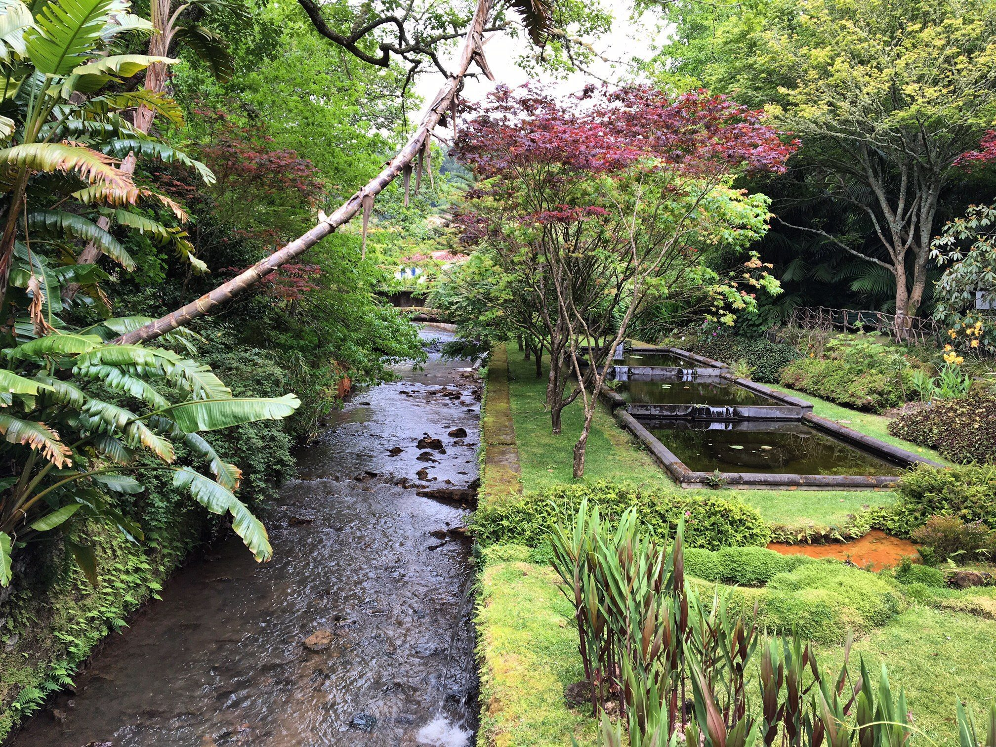 Azzorre-terranostra-giardino
