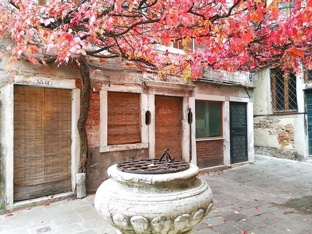 venezia-autunno