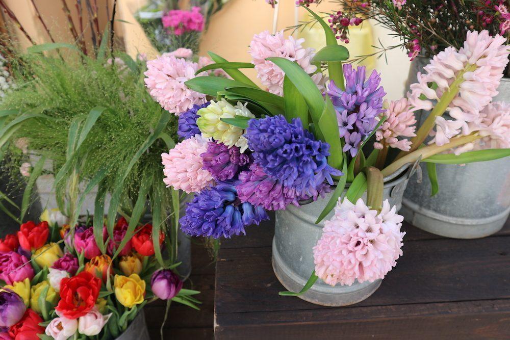 ibiza-famiglie-fiori